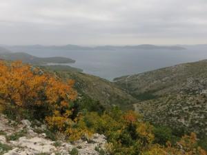 FormatFactorycôte croate