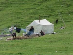 Nomades installés pour l'été